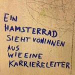 Hamsterrad3
